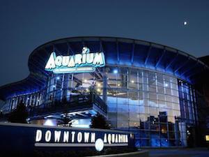 aquarium denver